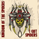 I Got Spiders - Hole in My Pocket