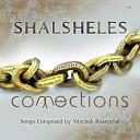 Shalsheles feat Dudi Kalish The Yedidim Choir - Niggun Shalsheles feat Dudi Kalish The Yedidim Choir