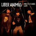 Liber Animus - Where Are You Now