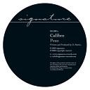 Calibre - My Chance