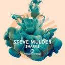 Steve Mulder - Hammerhead Original Mix