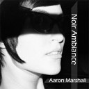 Aaron Marshall - The Salt Flats