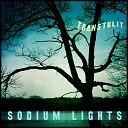 Sodium Lights - Petty Thief