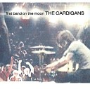 Cardigans - Lovefool