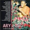 Ary Lobo - Consequ ncias da Bebida