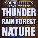 Sound Effects Royalty Free - Blast of the wind hurricane tornado
