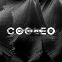Cooleo - Out the Wind