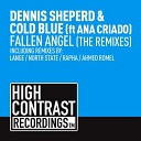 Dennis Sheperd Cold Blue feat Ana Criado - Fallen Angel