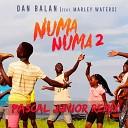 Numa Numa 2 (Pascal Junior Remix)