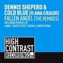 Dennis Sheperd Cold Blue feat Ana Criado - Fallen Angel Rapha Remix
