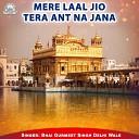Bhai Gurmeet Singh - Mere Laal Jio Tera Ant Na Jana