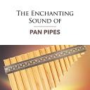 Pan Flute Dreamsound - Always On My Mind