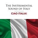 Ciao Italia - Il Tempo Se Ne Va Instrumental