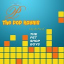 Various Artists - New York City Boy Instrumental version originally performed by Pet Shop Boys