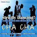 Ballroom Dance Orchestra - Boogie Wonderland