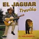 El Jaguar Trevi o - Corrido del Chapo Guzm n