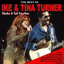 Shake a Tail Feather: The Best of Ike and Tina Turner