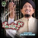 Muhammad Salman Ansari - Jashn E Wiladat Agaya