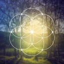 The Healing Place - What Is This Mysterious Delightful Shimmering Universe