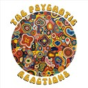 The Psychotic Reactions - All in My Head