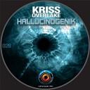 Kriss Overlake - System Overload