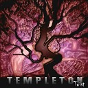 Templeton - This Road
