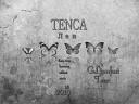 TENCA - ЛЕВ (GLinnfast  Remix)