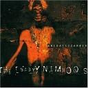 The Baby Namboos - Holy