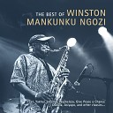 Winston Mankunku Ngozi feat. Mike Perry - Wajikeleza (With Mike Perry)