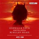 HammAli & Navai - Девочка Война (Dj Killjoy Remix)