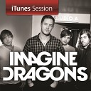 Imagine Dragons - Radioactive iTunes Session