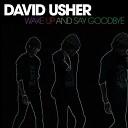 David Usher - Wake Up And Say Goodbye