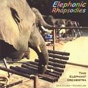 Thai Elephant Orchestra - Three baht opera