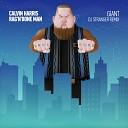 Calvin Harris & Rag'n'Bone Man - Giant (DJ Stranger Remix)