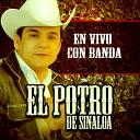 El Potro De Sinaloa Banda Los Pioneros - No Me Quites Tu Amor En Vivo