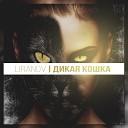 LIRANOV - Дикая кошка