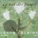 Vesna C ceres - Crocus Purple Waltz