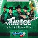 Los Mayitos de Sinaloa - El Regreso En Vivo