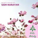 Sidh Narayan - The Red House