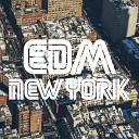 Various Artists - New York Continous Dj Mix