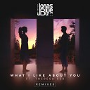 Jonas Blue & Theresa Rex - What I Like About You (Syn Cole Remix) [by DragoN_Sky]