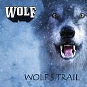 Wolf - BBQ am Untersee