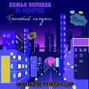 Божья коровка feat DJ Peretse vs Sikdope - Гранитный камушек Tik Tok WMNZR Mash Up