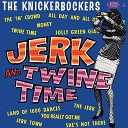 The Knickerbockers - You Really Got Me
