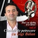 Gigi Balan - Sunt Sofer Viata I Frumoasa