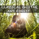 Гитара - Классичесская Гитара и звуки Природы 10