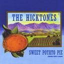 The Hicktones - Now and Then There s a Fool Such As I