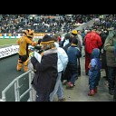 The Hull City Beat Boys - Tigers With Angel Wings