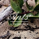 The Jam Jar - When We Were in Love Endings Are Just the Closing Nightmares to the Dream That Was You