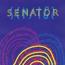 Сенатор - Мне нужна только ты